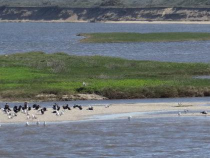 Por qué la Laguna Garzón forma parte del SNAP?