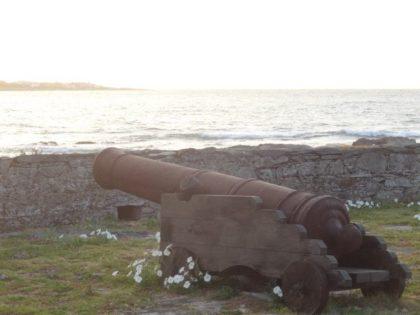 Se recupera la Isla Gorriti