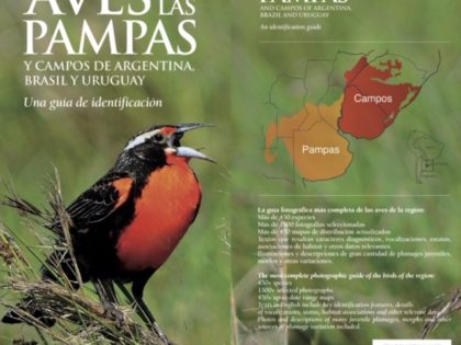 Aves de las Pampas…                     Birds of the Pampas…            An identification guide / Una guía de identificación
